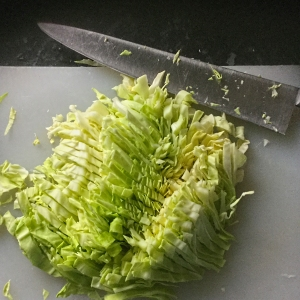 shredded summer cabbage