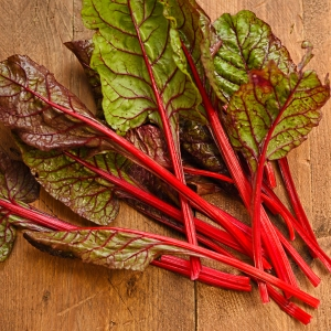 rhubarb-chard-harvested