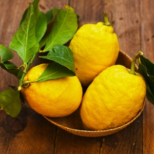 harvested lemons