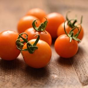 orange bourgoin harvested