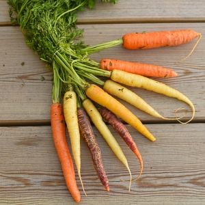 heritage carrots
